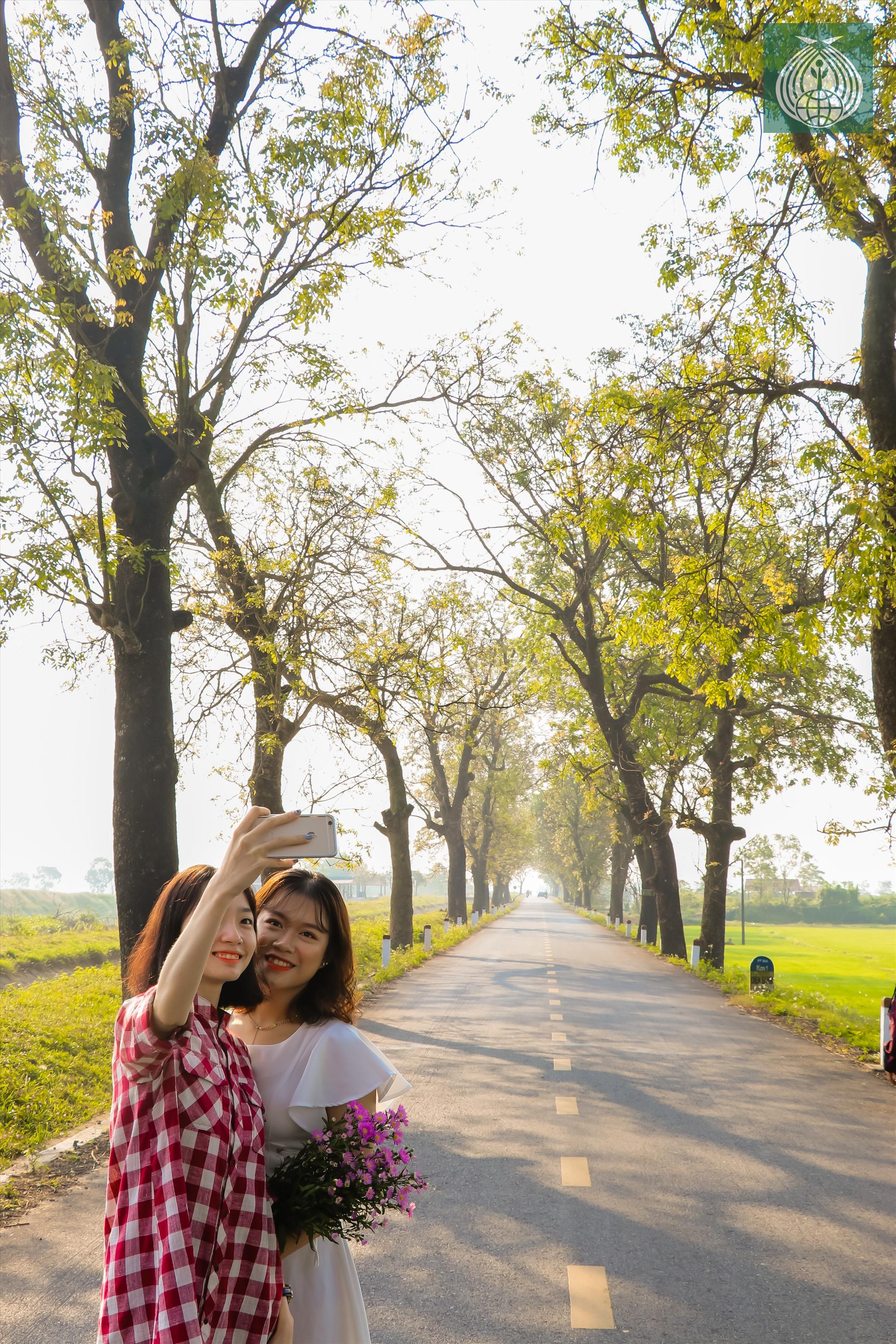 Đây cũng được xem là còn đường đẹp nhất và đang thu hút giới trẻ đến chiêm ngưỡng.