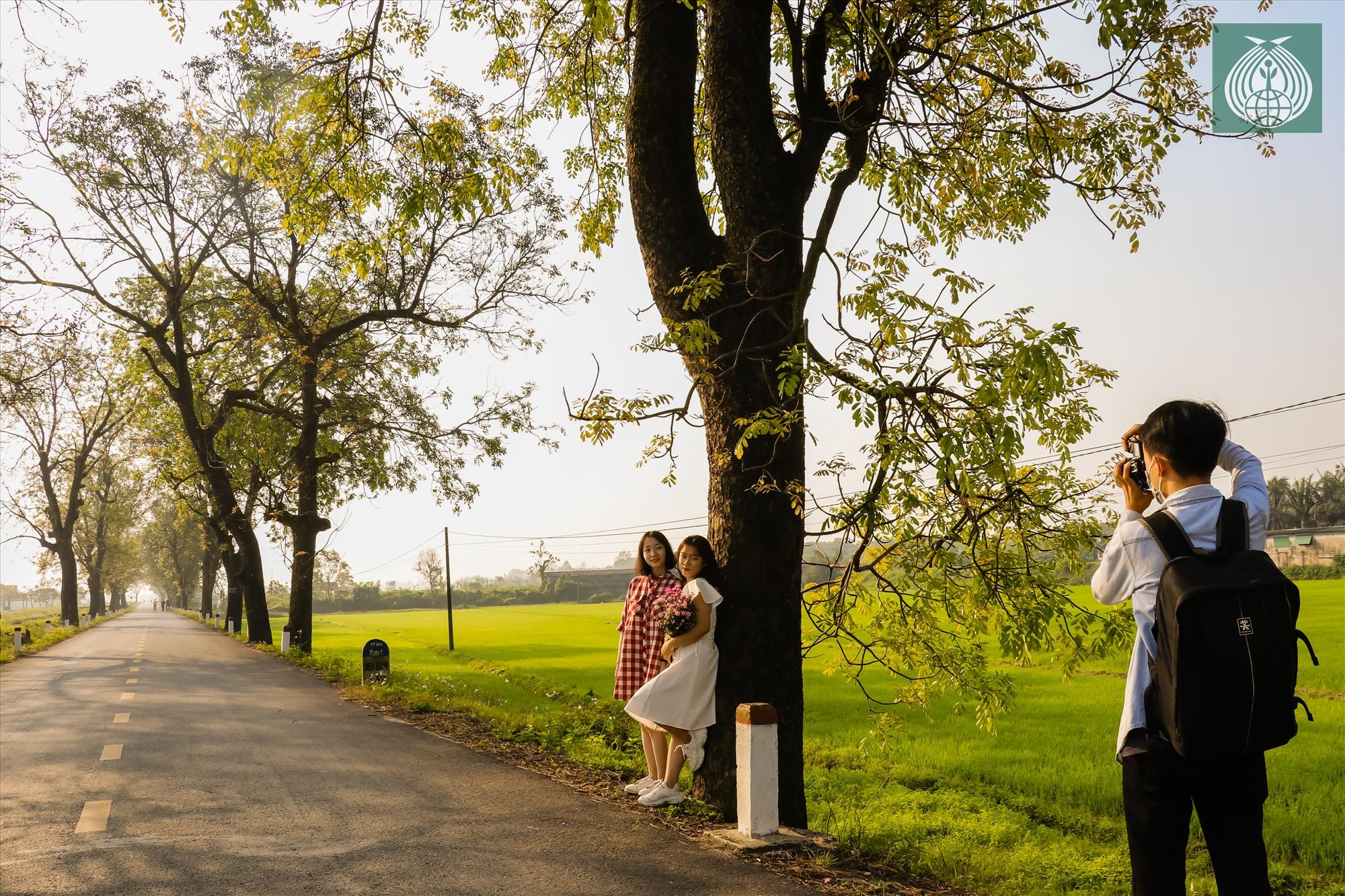 Những ngày qua, con đường này đã thu hút rất nhiều lượt người ghé thăm và lưu lại những bức hình đẹp.